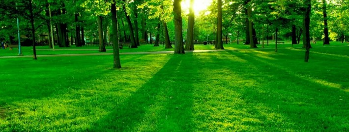 4-Nature-Wallpapers-2014-1